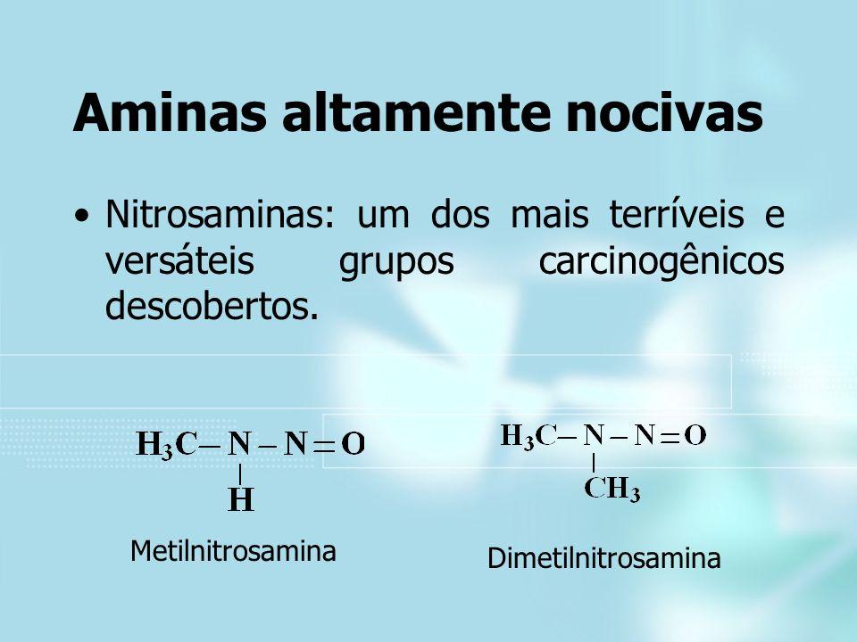 Aminas altamente nocivas Nitrosaminas: um dos mais terríveis e versáteis grupos carcinogênicos descobertos. Metilnitrosamina Dimetilnitrosamina