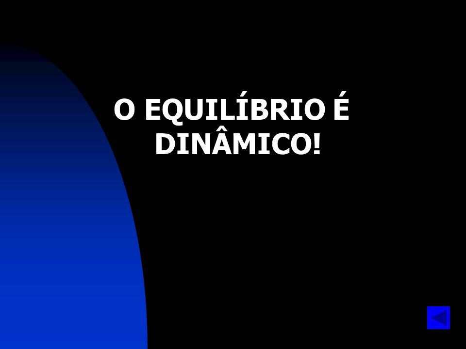 O EQUILÍBRIO É DINÂMICO!