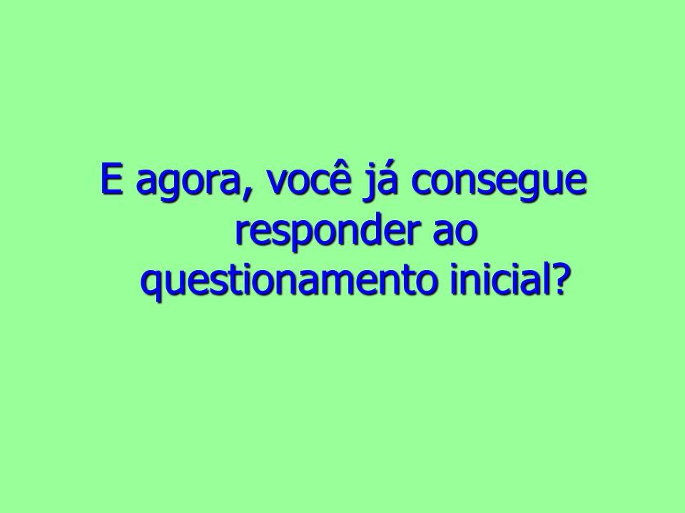 E agora, você já consegue responder ao questionamento inicial?