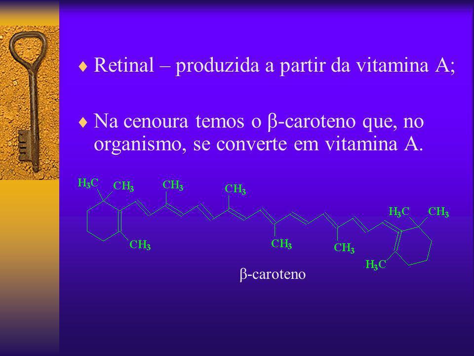 Retinal – produzida a partir da vitamina A; Na cenoura temos o β-caroteno que, no organismo, se converte em vitamina A. β-caroteno