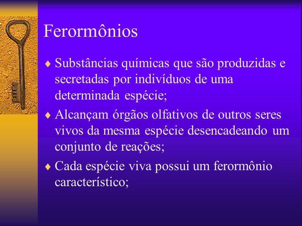 Ferormônios Substâncias químicas que são produzidas e secretadas por indivíduos de uma determinada espécie; Alcançam órgãos olfativos de outros seres