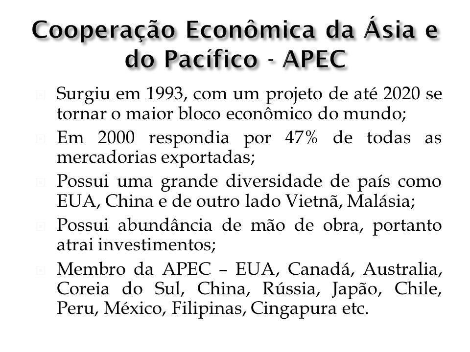 Surgiu em 1993, com um projeto de até 2020 se tornar o maior bloco econômico do mundo; Em 2000 respondia por 47% de todas as mercadorias exportadas; P