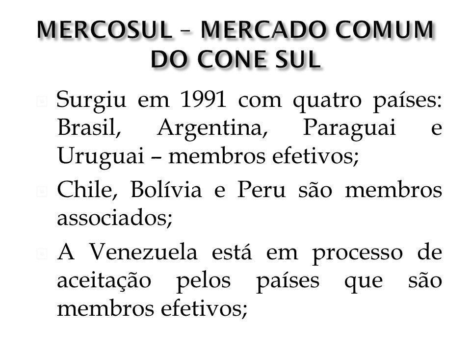 Surgiu em 1991 com quatro países: Brasil, Argentina, Paraguai e Uruguai – membros efetivos; Chile, Bolívia e Peru são membros associados; A Venezuela