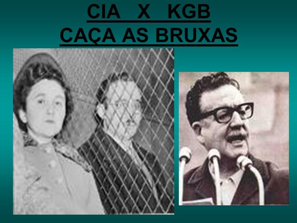 GUERRAS (CAPITALISMO X SOCIALISMO) GUERRA DO VIETNÃ. GUERRA DA CORÉIA.