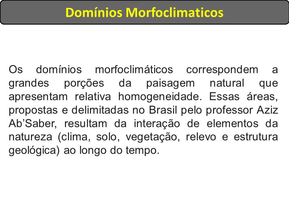 Os domínios morfoclimáticos correspondem a grandes porções da paisagem natural que apresentam relativa homogeneidade. Essas áreas, propostas e delimit