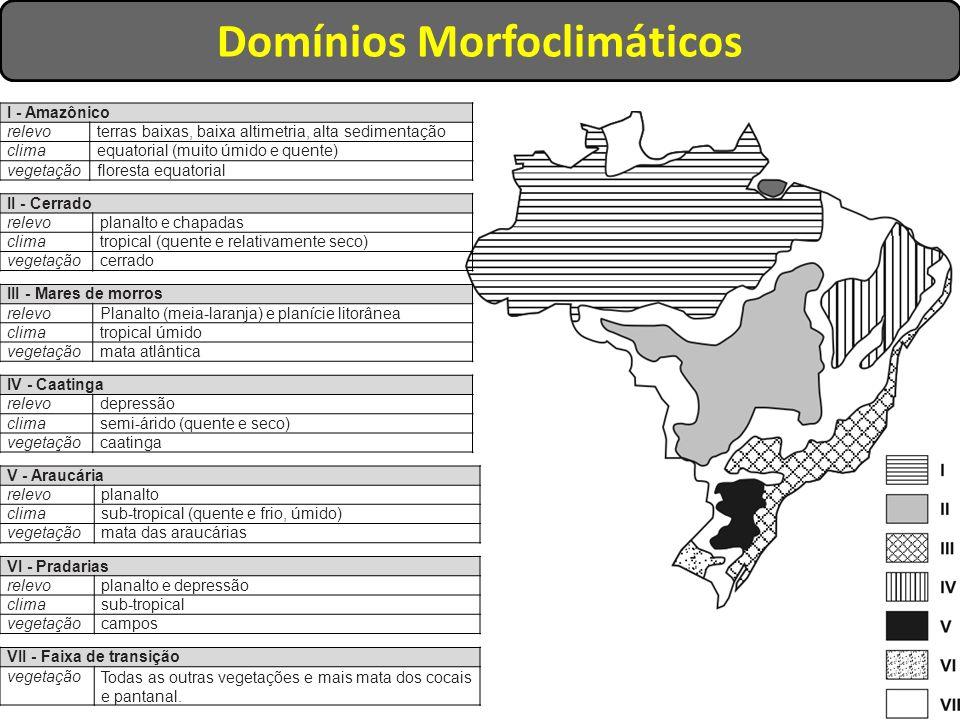 Domínios Morfoclimáticos I - Amazônico relevoterras baixas, baixa altimetria, alta sedimentação climaequatorial (muito úmido e quente) vegetaçãoflores