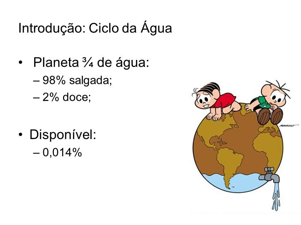 Introdução: Ciclo da Água Planeta ¾ de água: –98% salgada; –2% doce; Disponível: –0,014%
