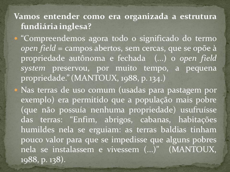 Vamos entender como era organizada a estrutura fundiária inglesa? Compreendemos agora todo o significado do termo open field = campos abertos, sem cer