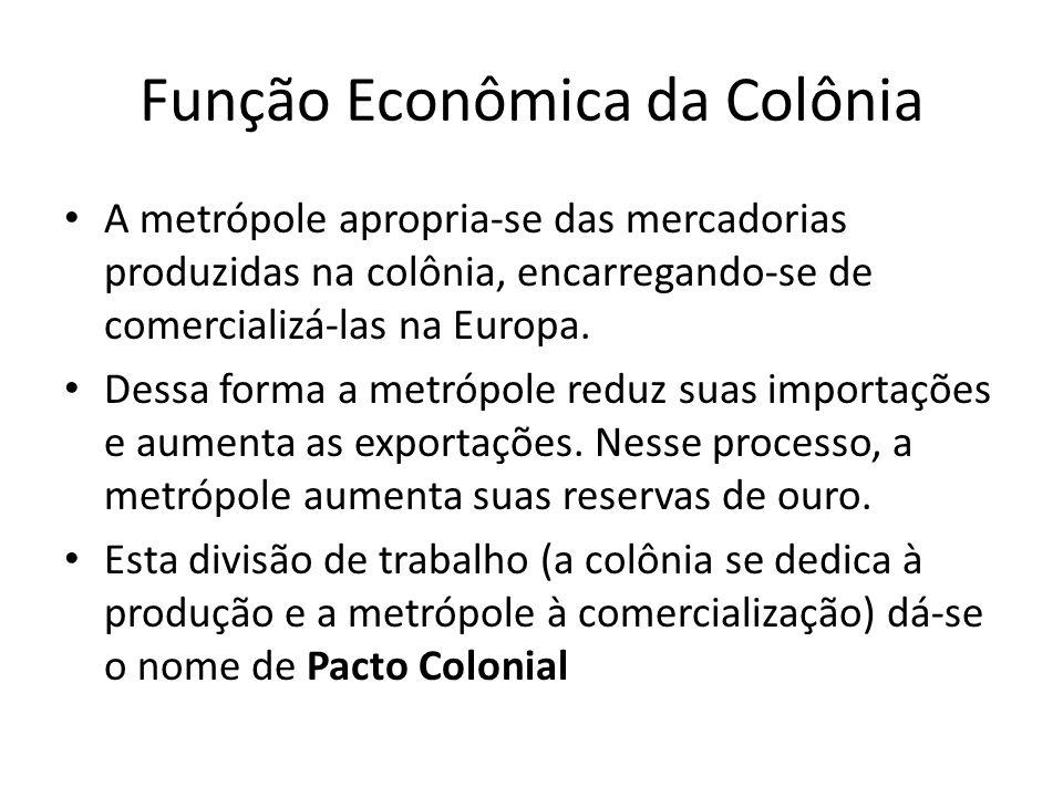 Função Econômica da Colônia A metrópole apropria-se das mercadorias produzidas na colônia, encarregando-se de comercializá-las na Europa. Dessa forma