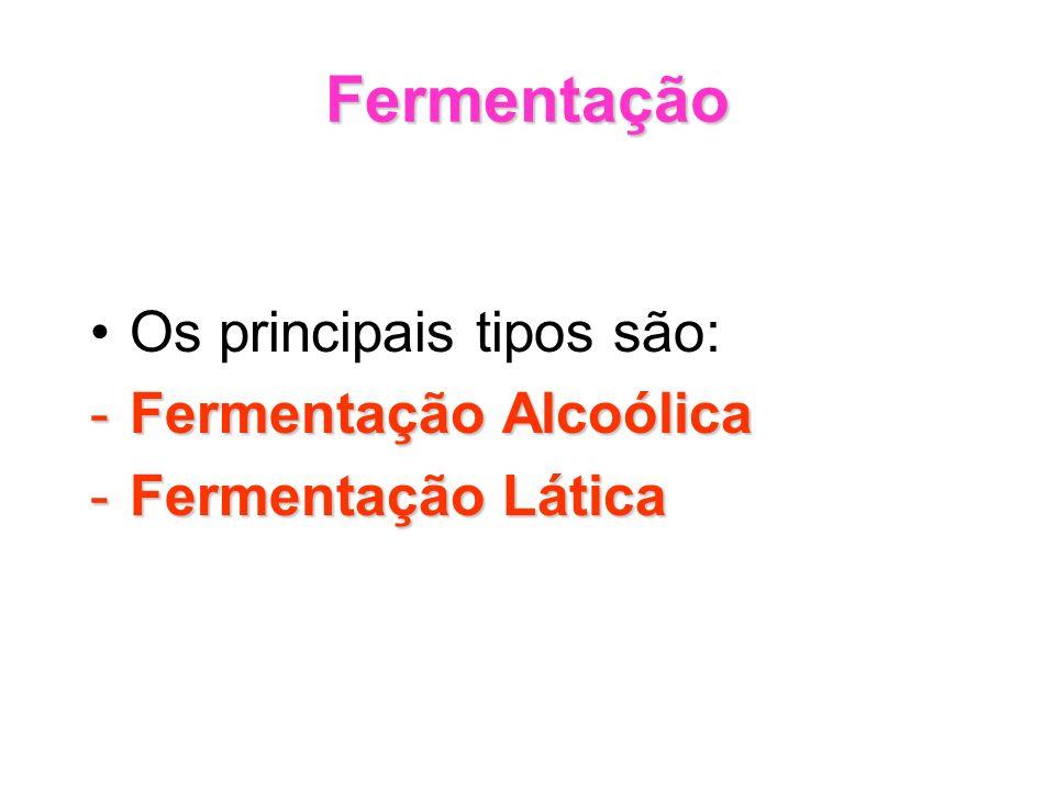 Fermentação Os principais tipos são: -Fermentação Alcoólica -Fermentação Lática