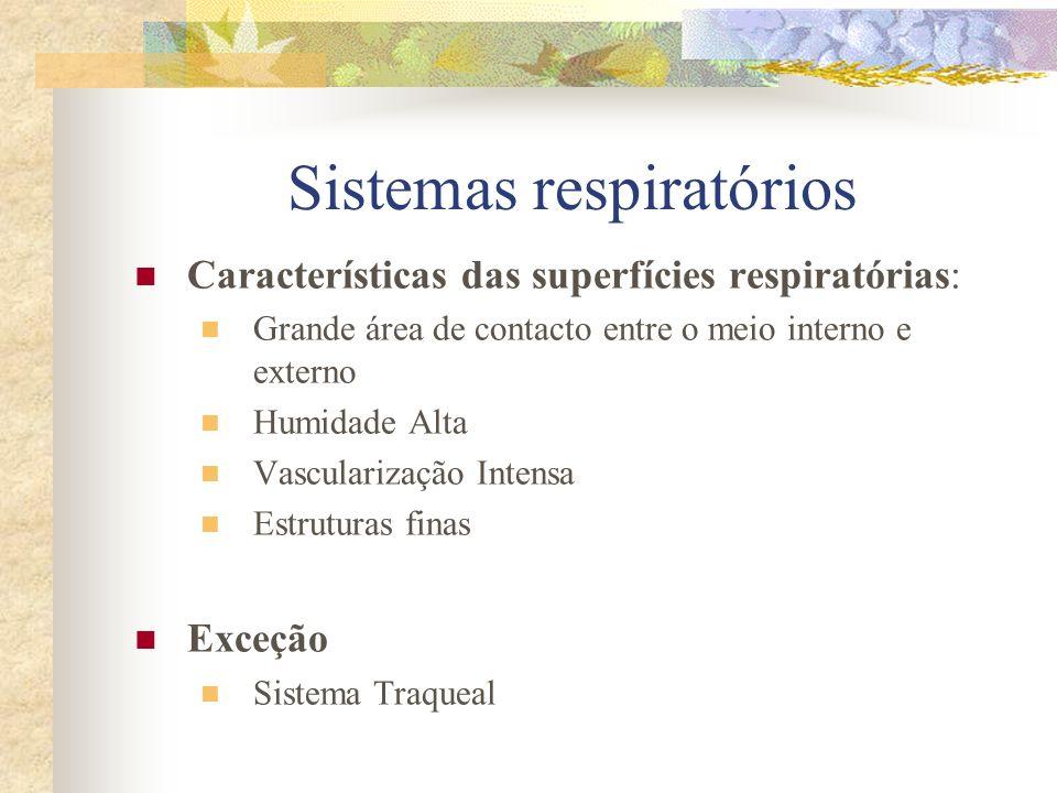 Respiração Tegumentar As trocas ocorrem através do revestimento da superfície do corpo.