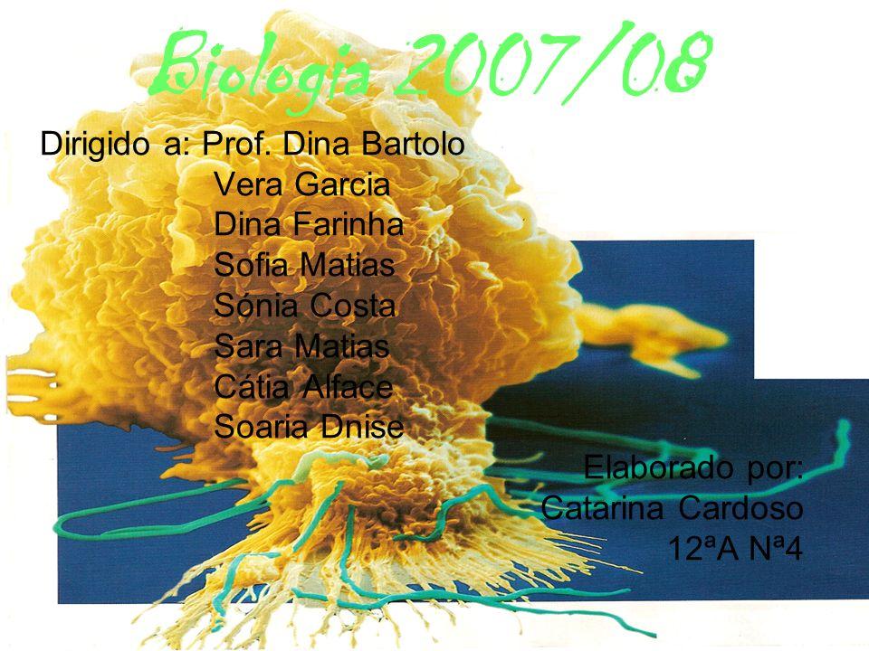 Biologia 2007/08 Dirigido a: Prof. Dina Bartolo Vera Garcia Dina Farinha Sofia Matias Sónia Costa Sara Matias Cátia Alface Soaria Dnise Elaborado por: