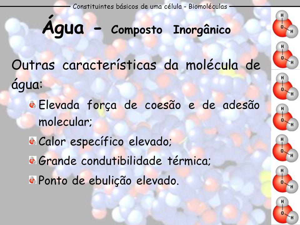 Constituintes básicos de uma célula - Biomoléculas Água - Composto Inorgânico Outras características da molécula de água: Elevada força de coesão e de