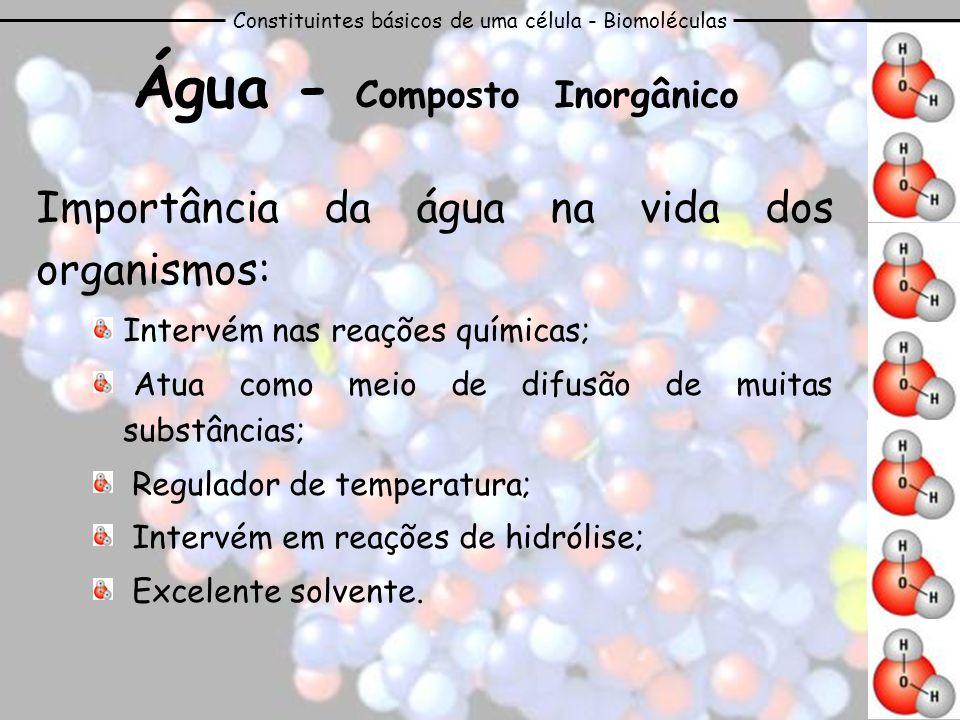 Constituintes básicos de uma célula - Biomoléculas Água - Composto Inorgânico Importância da água na vida dos organismos: Intervém nas reações química