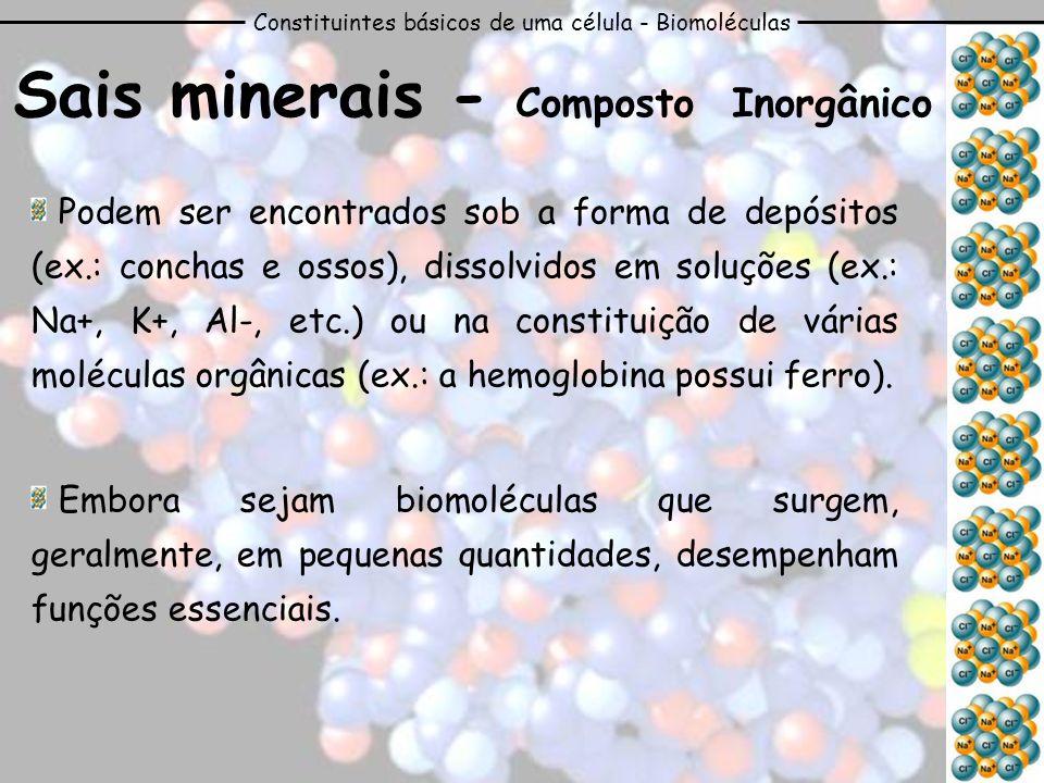 Constituintes básicos de uma célula - Biomoléculas Sais minerais - Composto Inorgânico Podem ser encontrados sob a forma de depósitos (ex.: conchas e