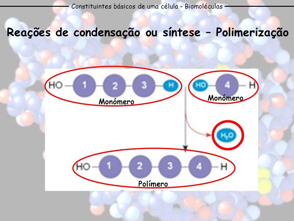 Constituintes básicos de uma célula - Biomoléculas Reações de condensação ou síntese – Polimerização Monómero Polímero