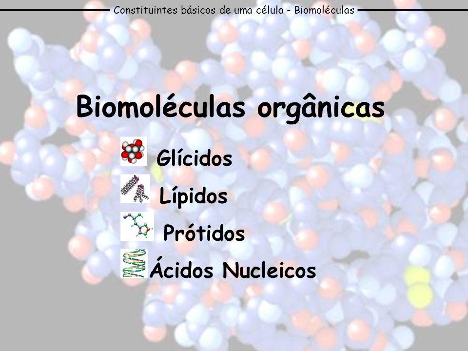 Constituintes básicos de uma célula - Biomoléculas Biomoléculas orgânicas Glícidos Lípidos Prótidos Ácidos Nucleicos