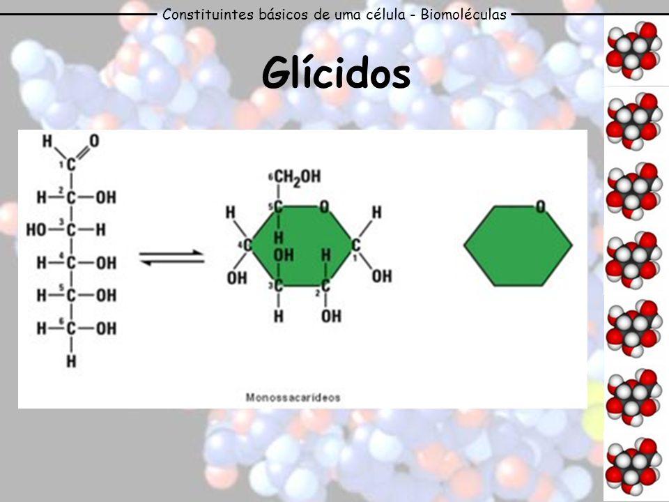Constituintes básicos de uma célula - Biomoléculas Glícidos