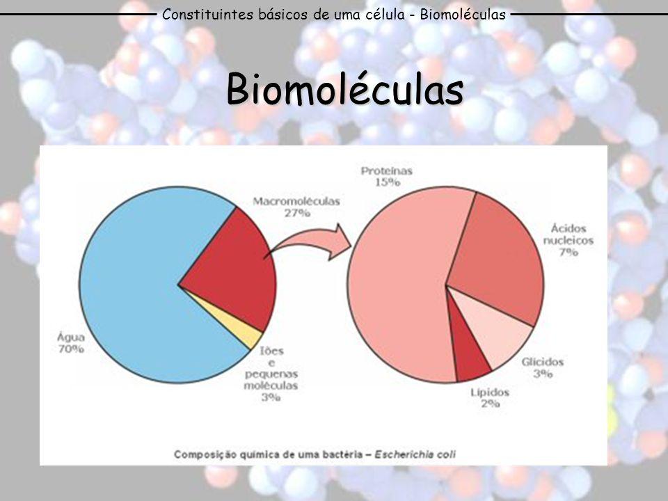 Constituintes básicos de uma célula - Biomoléculas Ácidos nucleicos Nucleótidos são constituídos por: Pentose Base Azotada Grupo Fosfato