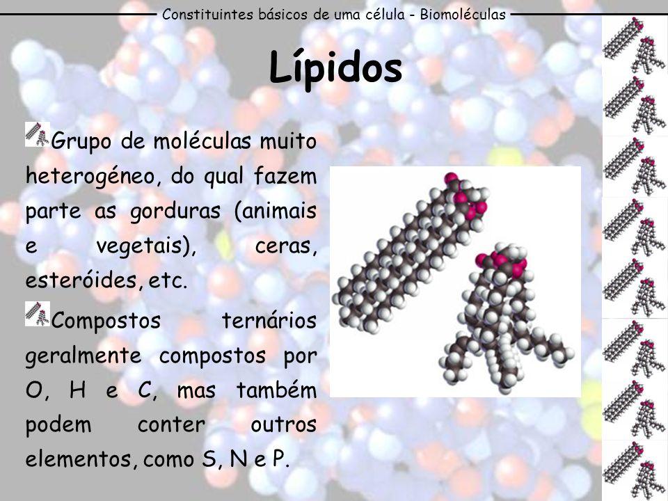 Constituintes básicos de uma célula - Biomoléculas Lípidos Grupo de moléculas muito heterogéneo, do qual fazem parte as gorduras (animais e vegetais),