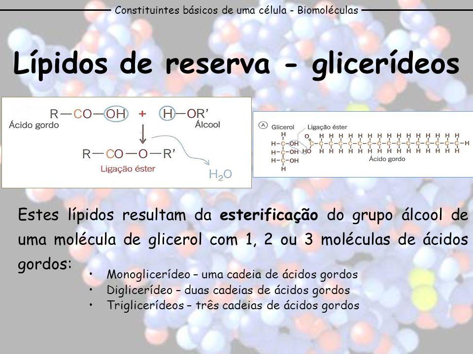 Lípidos de reserva - glicerídeos Estes lípidos resultam da esterificação do grupo álcool de uma molécula de glicerol com 1, 2 ou 3 moléculas de ácidos
