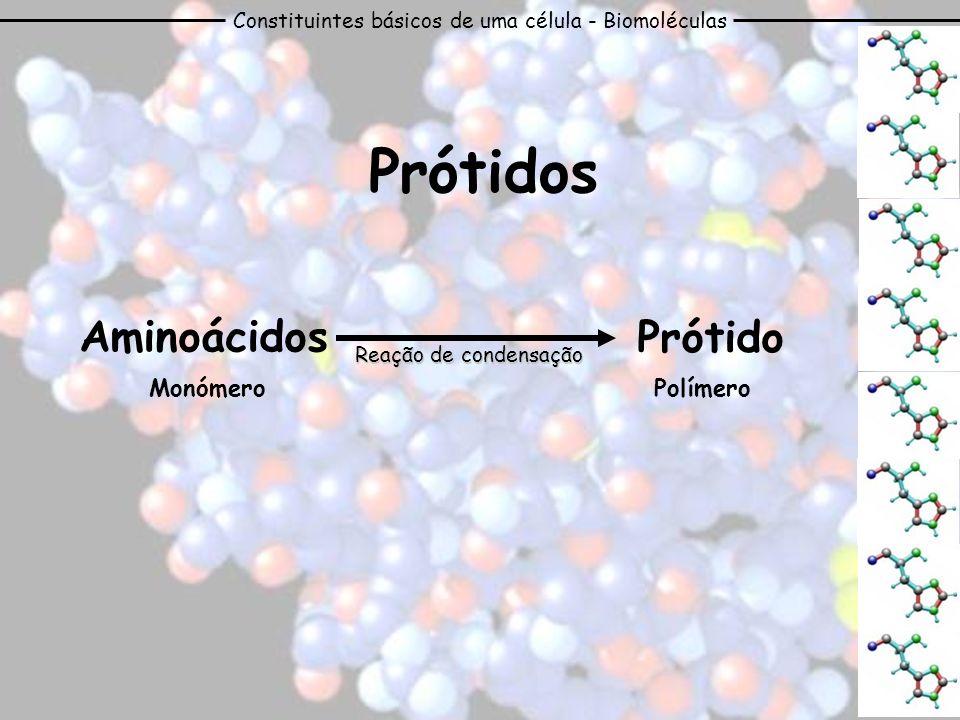 Constituintes básicos de uma célula - Biomoléculas Prótidos PolímeroMonómero Aminoácidos Prótido Reação de condensação
