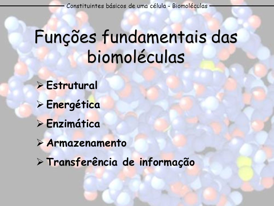 Constituintes básicos de uma célula - Biomoléculas Estas macromoléculas são polímeros que resultam da ligação de muitas moléculas básicas, estruturalmente simples e semelhantes entre si – monómeros Biomoléculas orgânicas