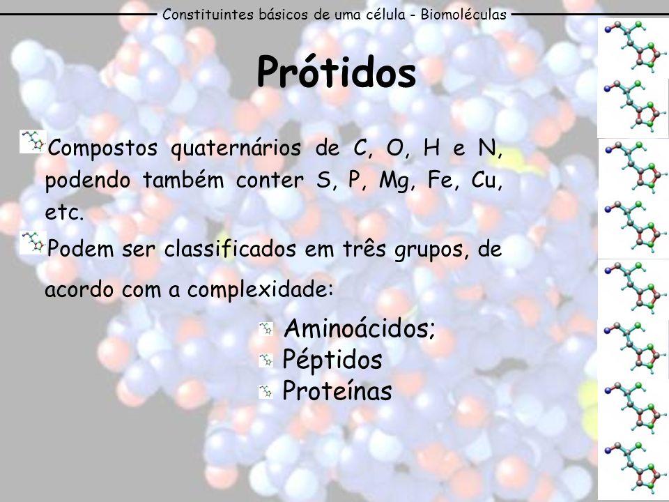 Constituintes básicos de uma célula - Biomoléculas Prótidos Compostos quaternários de C, O, H e N, podendo também conter S, P, Mg, Fe, Cu, etc. Podem