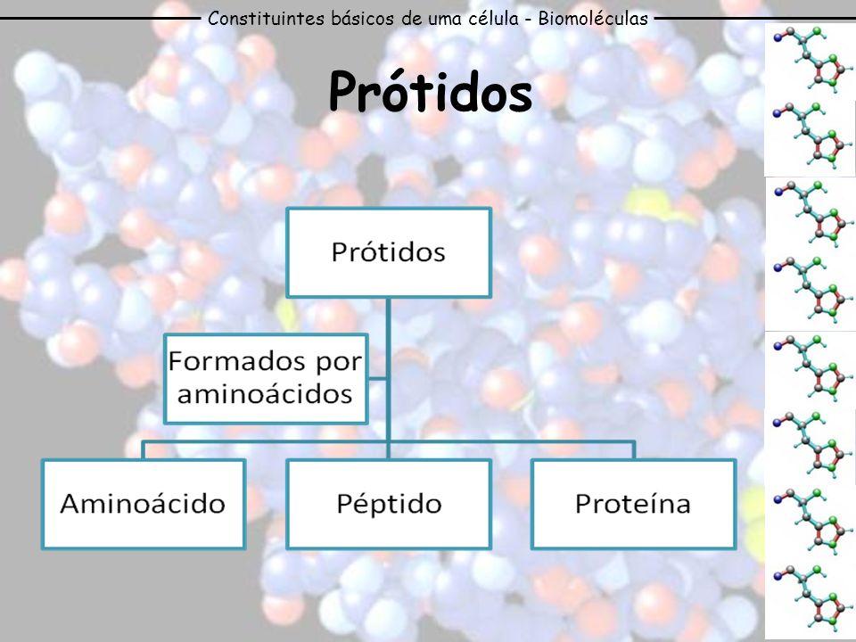Constituintes básicos de uma célula - Biomoléculas Prótidos