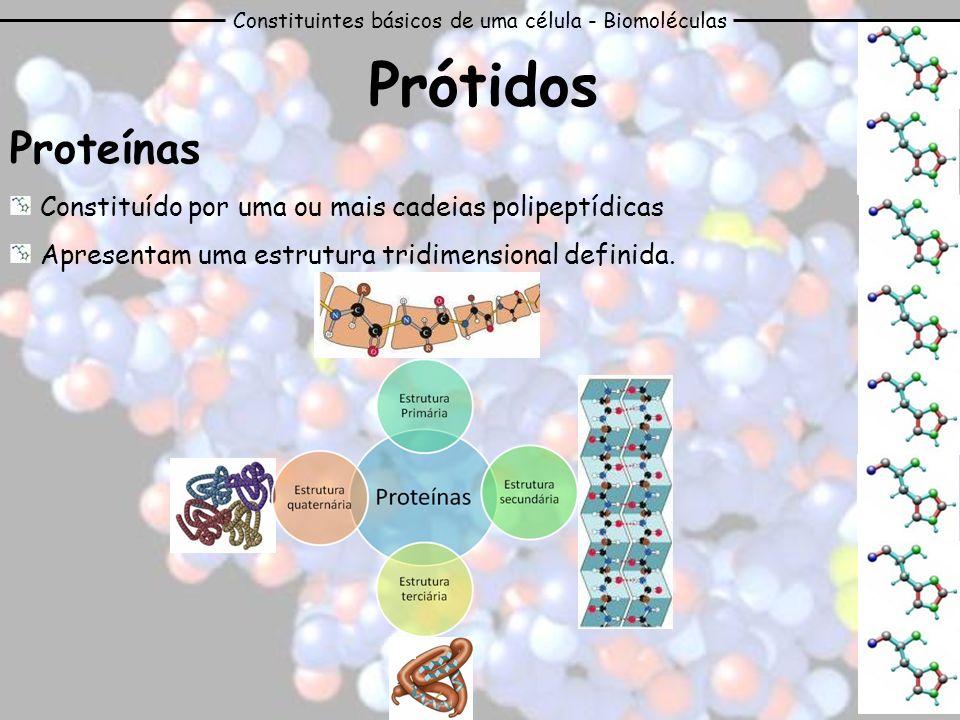 Constituintes básicos de uma célula - Biomoléculas Prótidos Proteínas Constituído por uma ou mais cadeias polipeptídicas Apresentam uma estrutura trid