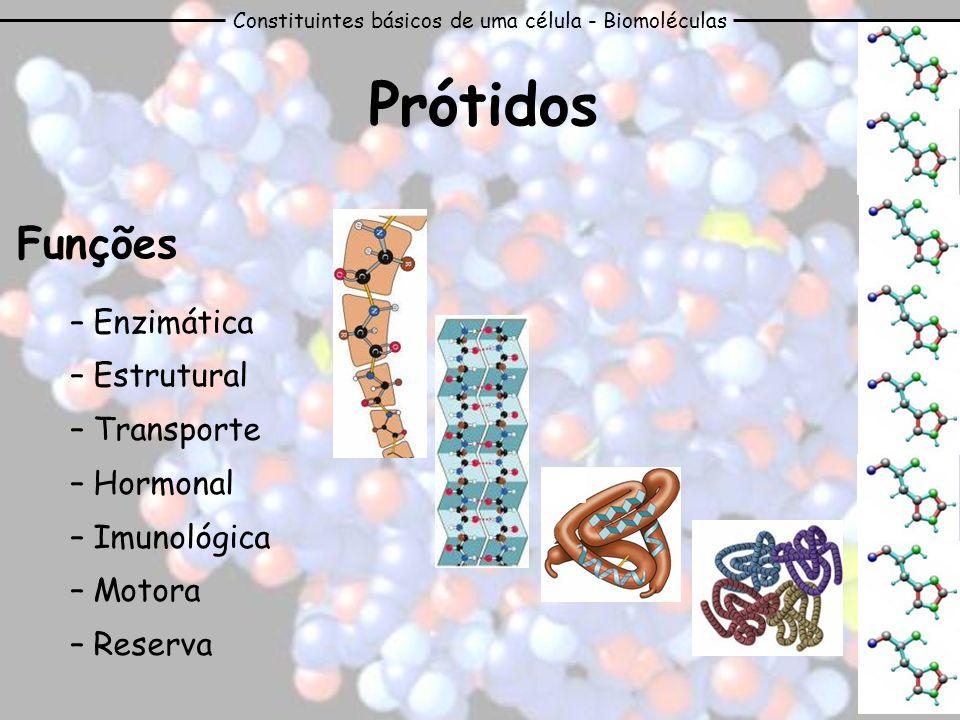 Constituintes básicos de uma célula - Biomoléculas Prótidos Funções – Enzimática – Estrutural – Transporte – Hormonal – Imunológica – Motora – Reserva