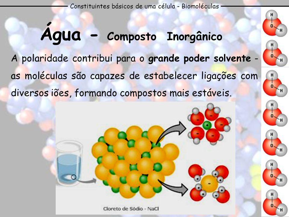 Constituintes básicos de uma célula - Biomoléculas Água - Composto Inorgânico Outras características da molécula de água: Elevada força de coesão e de adesão molecular; Calor específico elevado; Grande condutibilidade térmica; Ponto de ebulição elevado.