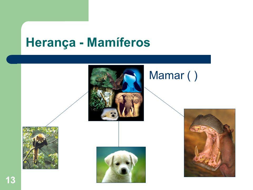 13 Herança - Mamíferos Mamar ( )