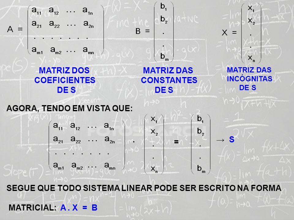 SISTEMAS LINEARES ( 1ª AULA) MATRIZ DOS COEFICIENTES DE S MATRIZ DAS CONSTANTES DE S MATRIZ DAS INCÓGNITAS DE S AGORA, TENDO EM VISTA QUE:. = S SEGUE