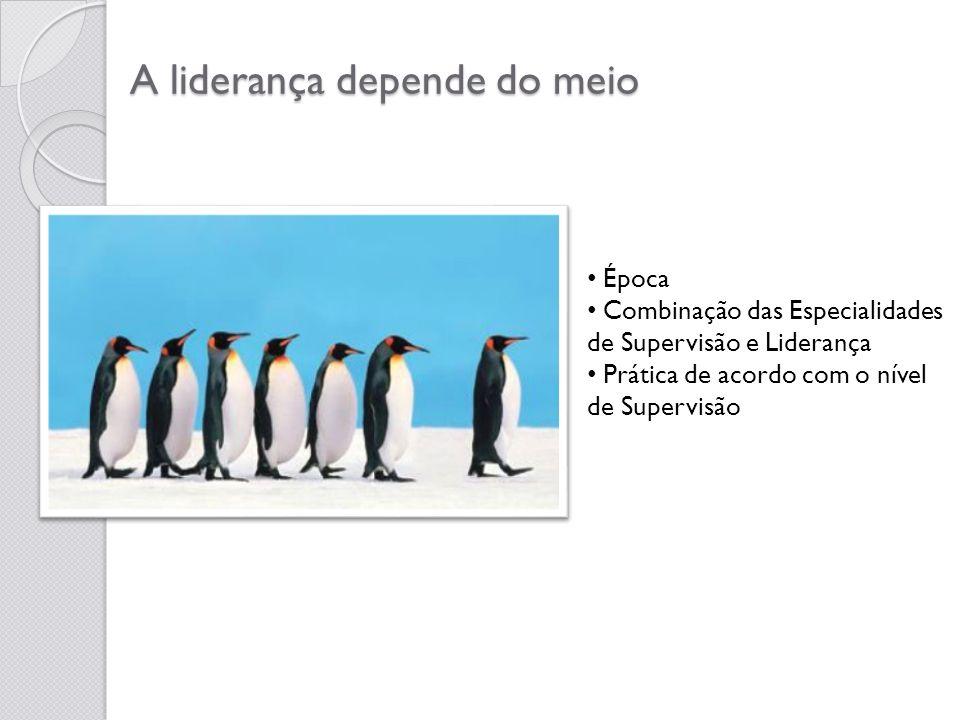 A liderança depende do meio Época Combinação das Especialidades de Supervisão e Liderança Prática de acordo com o nível de Supervisão