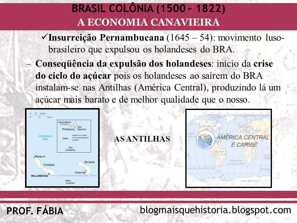 BRASIL COLÔNIA (1500 – 1822) blogmaisquehistoria.blogspot.com PROF. FÁBIA A ECONOMIA CANAVIEIRA Insurreição Pernambucana (1645 – 54): movimento luso-