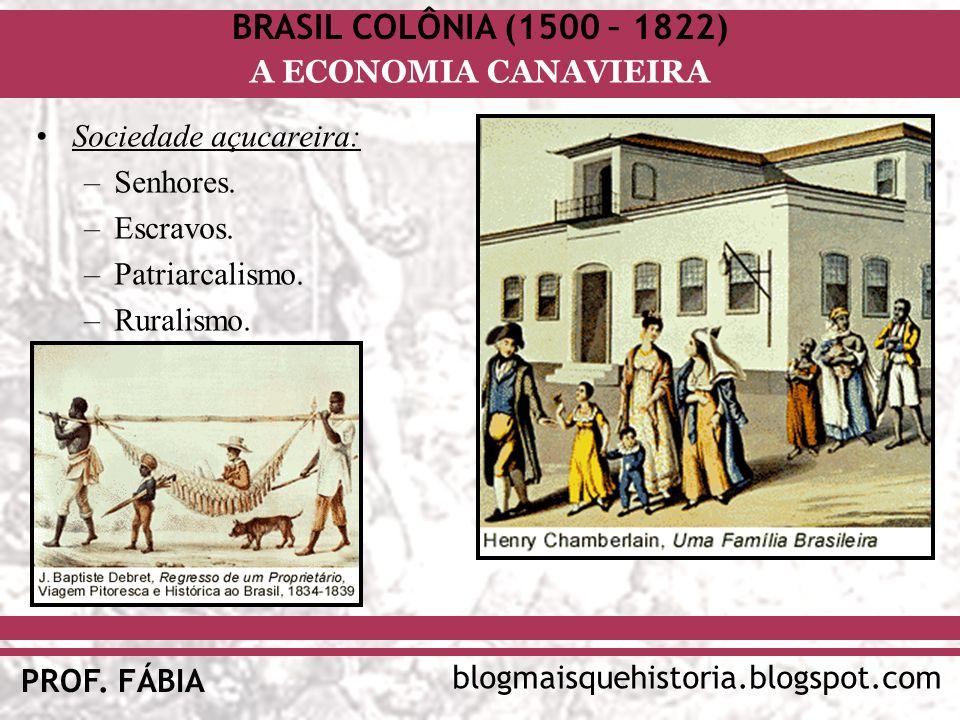 BRASIL COLÔNIA (1500 – 1822) blogmaisquehistoria.blogspot.com PROF. FÁBIA A ECONOMIA CANAVIEIRA Sociedade açucareira: –Senhores. –Escravos. –Patriarca