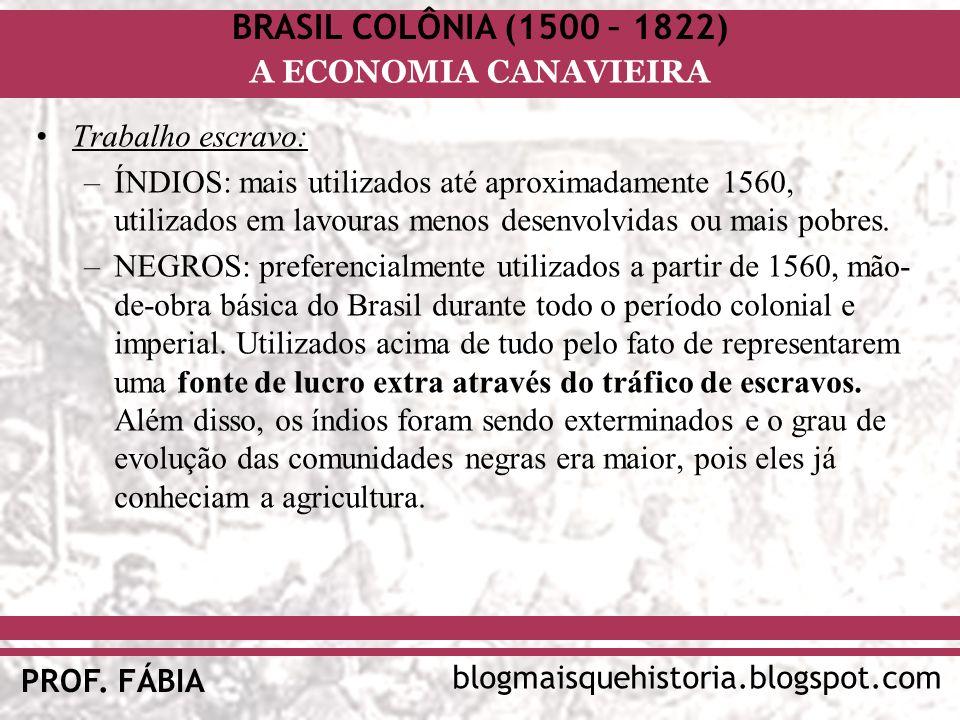 BRASIL COLÔNIA (1500 – 1822) blogmaisquehistoria.blogspot.com PROF. FÁBIA A ECONOMIA CANAVIEIRA Trabalho escravo: –ÍNDIOS: mais utilizados até aproxim