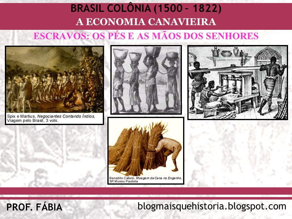 BRASIL COLÔNIA (1500 – 1822) blogmaisquehistoria.blogspot.com PROF. FÁBIA A ECONOMIA CANAVIEIRA ESCRAVOS: OS PÉS E AS MÃOS DOS SENHORES