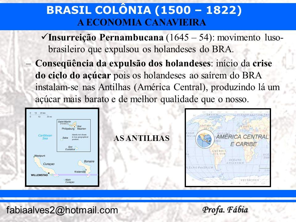 BRASIL COLÔNIA (1500 – 1822) Profa. Fábia fabiaalves2@hotmail.com A ECONOMIA CANAVIEIRA Insurreição Pernambucana (1645 – 54): movimento luso- brasilei
