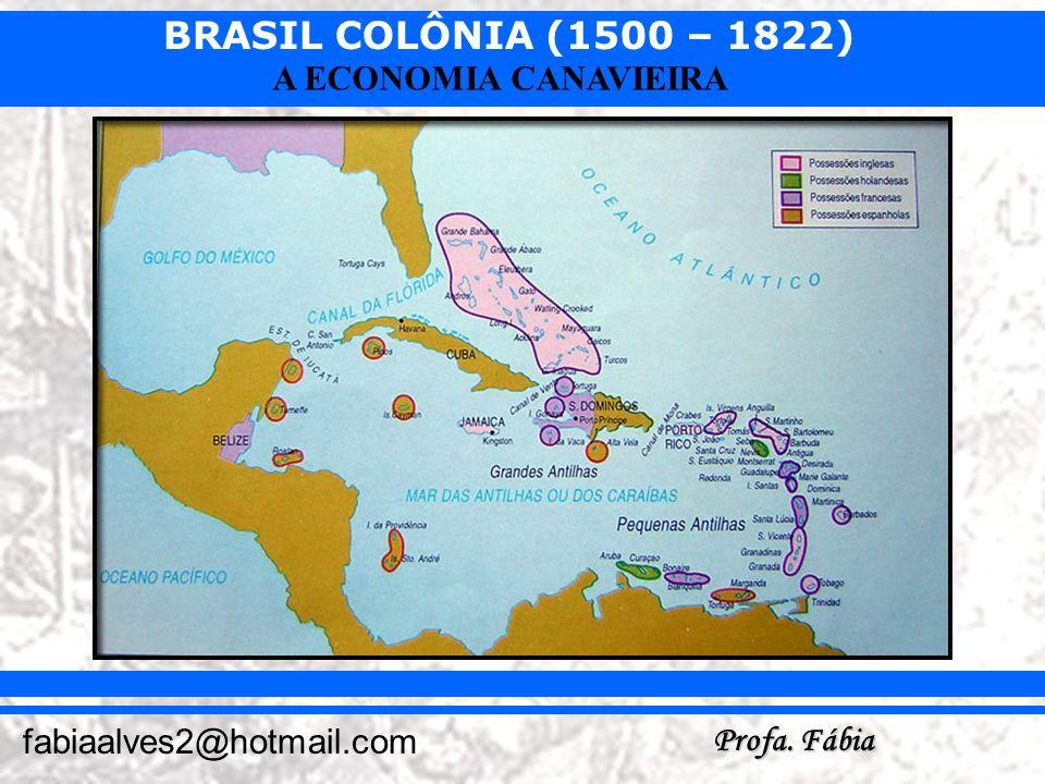 BRASIL COLÔNIA (1500 – 1822) Profa. Fábia fabiaalves2@hotmail.com A ECONOMIA CANAVIEIRA