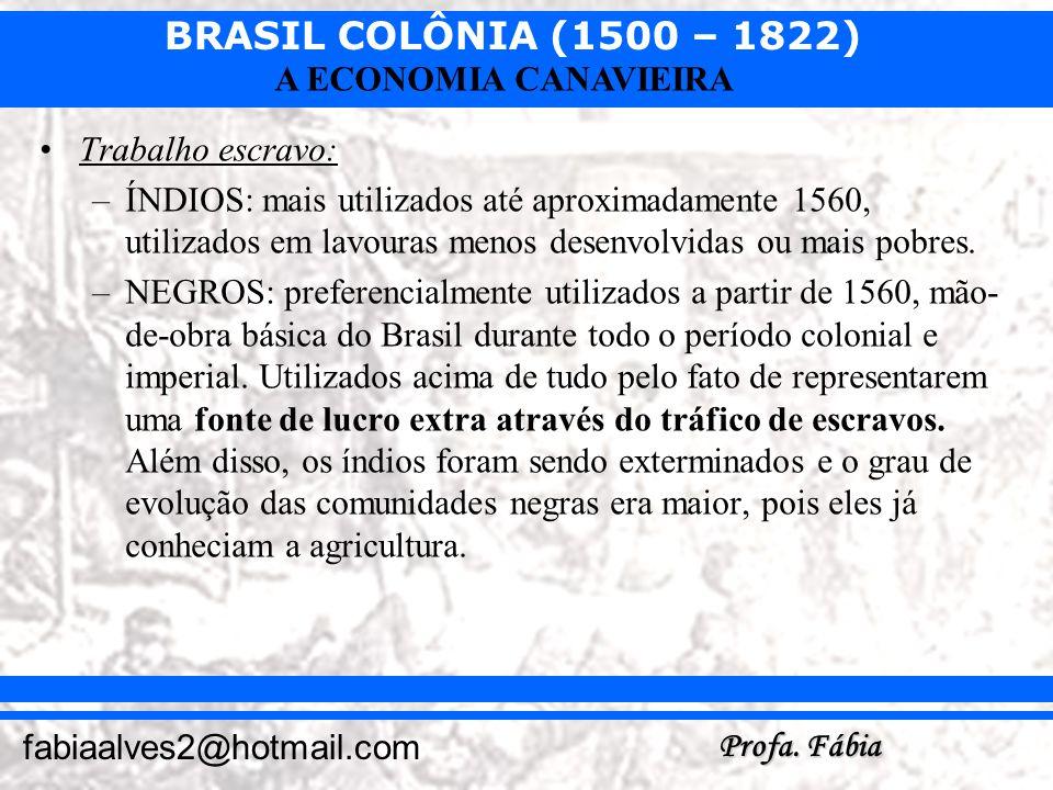 BRASIL COLÔNIA (1500 – 1822) Profa. Fábia fabiaalves2@hotmail.com A ECONOMIA CANAVIEIRA Trabalho escravo: –ÍNDIOS: mais utilizados até aproximadamente