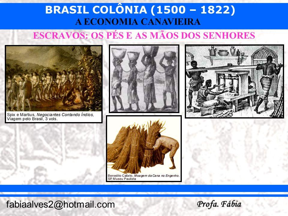 BRASIL COLÔNIA (1500 – 1822) Profa. Fábia fabiaalves2@hotmail.com A ECONOMIA CANAVIEIRA ESCRAVOS: OS PÉS E AS MÃOS DOS SENHORES
