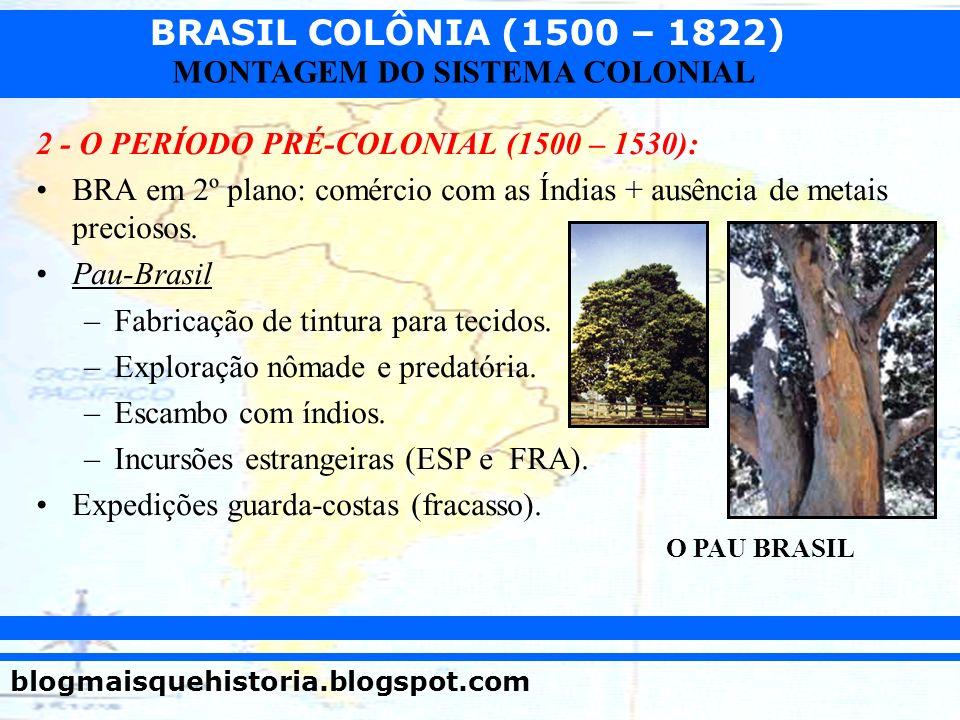 BRASIL COLÔNIA (1500 – 1822) blogmaisquehistoria.blogspot.com MONTAGEM DO SISTEMA COLONIAL 2 - O PERÍODO PRÉ-COLONIAL (1500 – 1530): BRA em 2º plano: