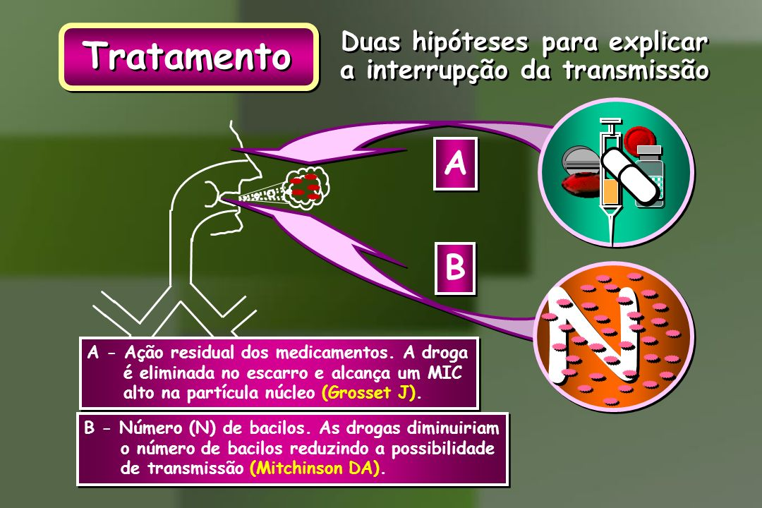 Tratamento Duas hipóteses para explicar a interrupção da transmissão Duas hipóteses para explicar a interrupção da transmissão B B B - Número (N) de b