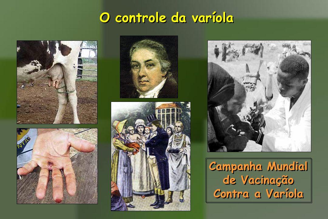 O controle da varíola Campanha Mundial de Vacinação Contra a Varíola Campanha Mundial de Vacinação Contra a Varíola