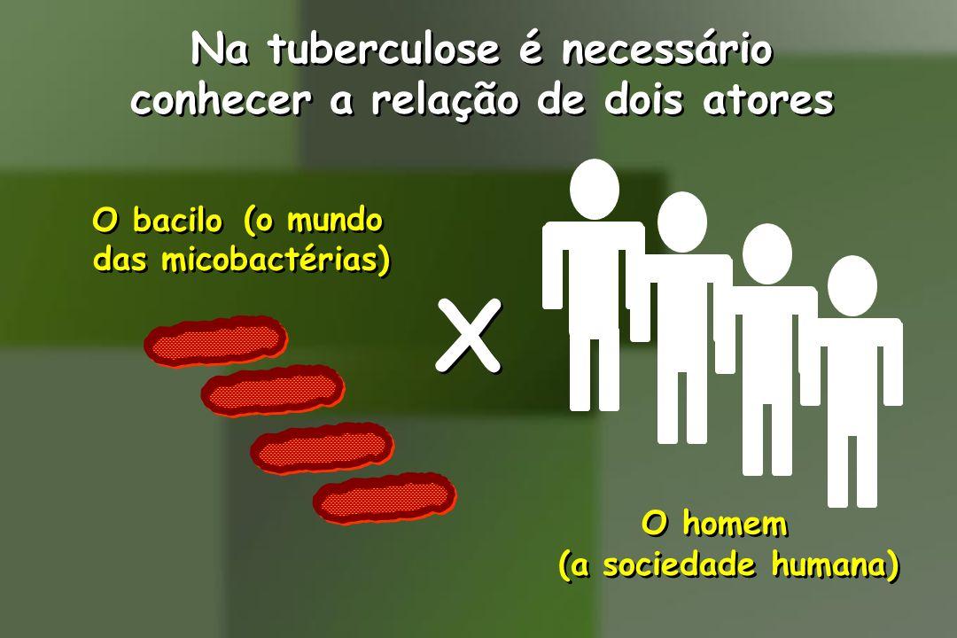 Na tuberculose é necessário conhecer a relação de dois atores Na tuberculose é necessário conhecer a relação de dois atores X X O bacilo O homem (o mu