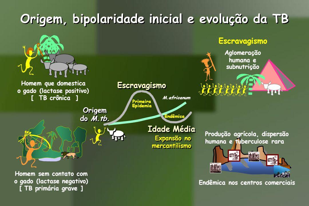 Origem, bipolaridade inicial e evolução da TB Origem do M.tb. Origem do M.tb. Escravagismo Idade Média Expansão no mercantilismo Idade Média Expansão