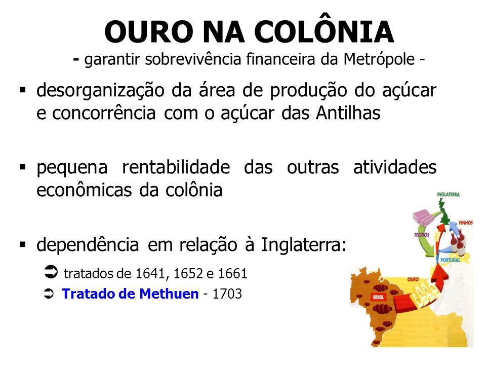 OURO NA COLÔNIA - garantir sobrevivência financeira da Metrópole - desorganização da área de produção do açúcar e concorrência com o açúcar das Antilh