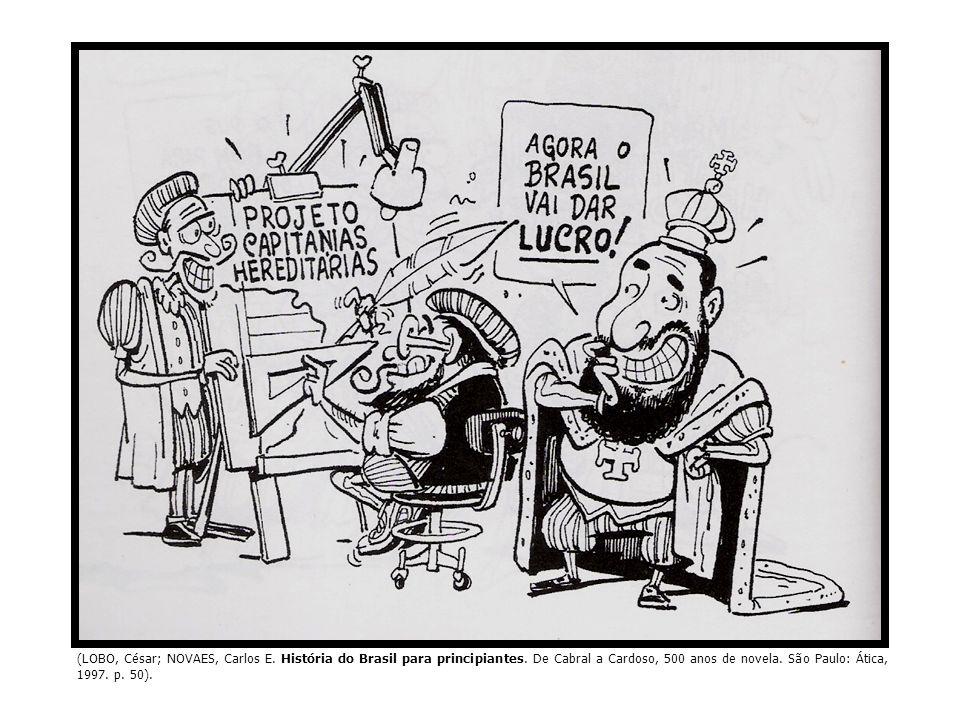 (LOBO, César; NOVAES, Carlos E. História do Brasil para principiantes. De Cabral a Cardoso, 500 anos de novela. São Paulo: Ática, 1997. p. 50).